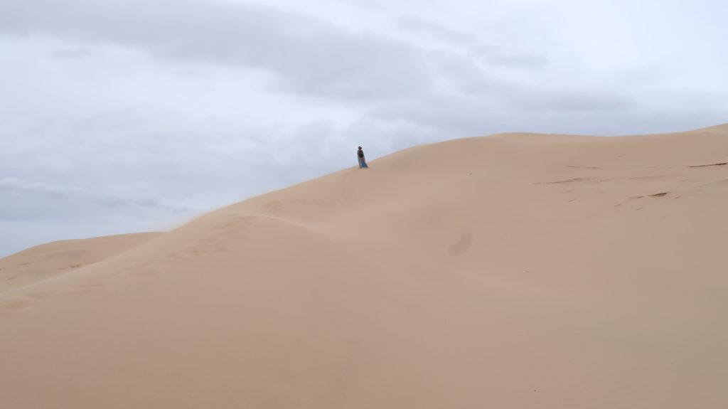 Sand und Gobi - Mongolia