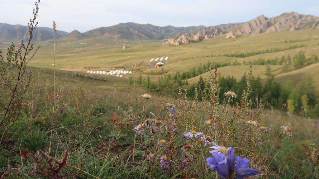 Nationalpark Terelj - Mongolei.