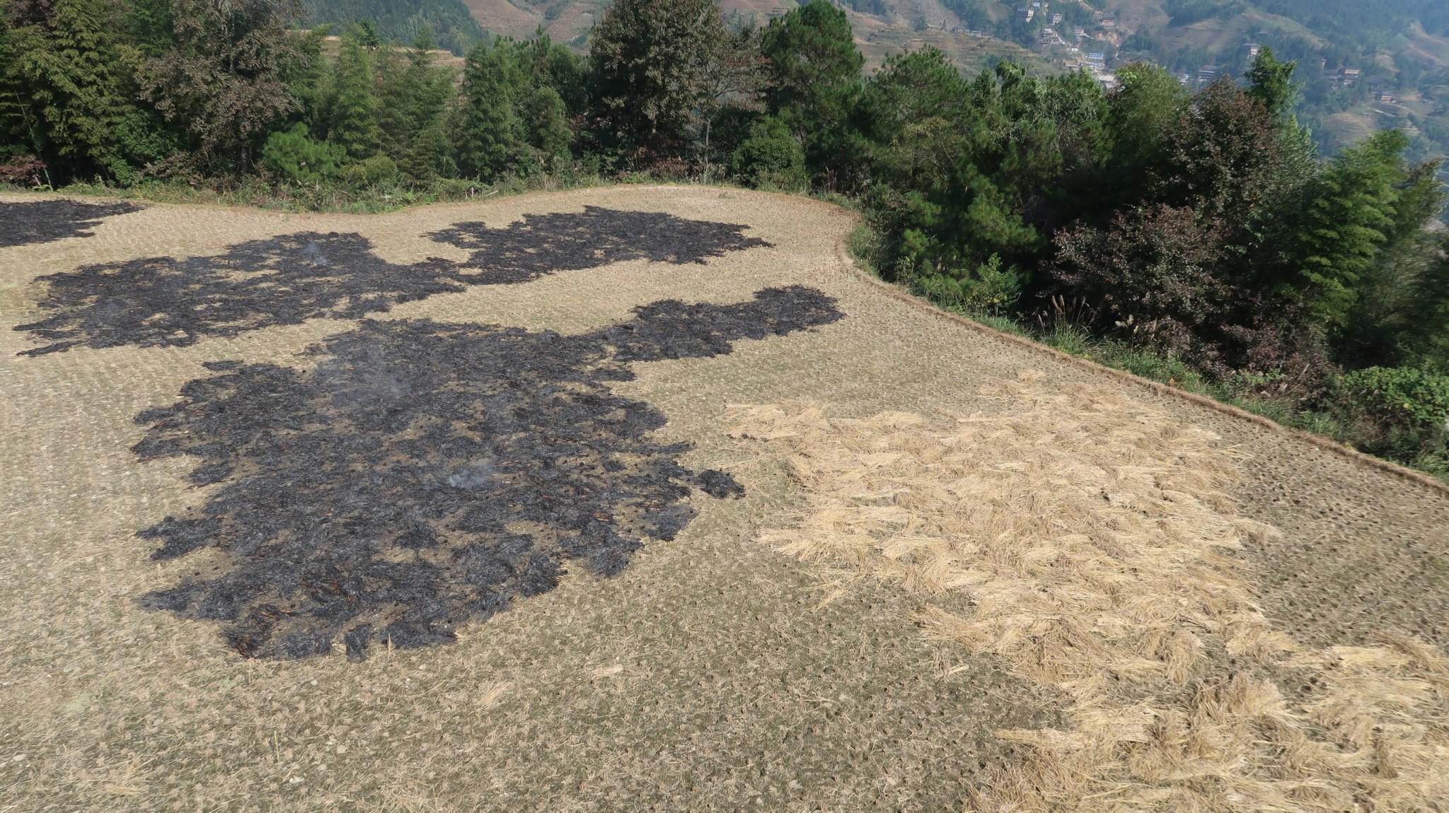 Abgebrannte Felder nach dem Reisschnitt , Tiantouzhai