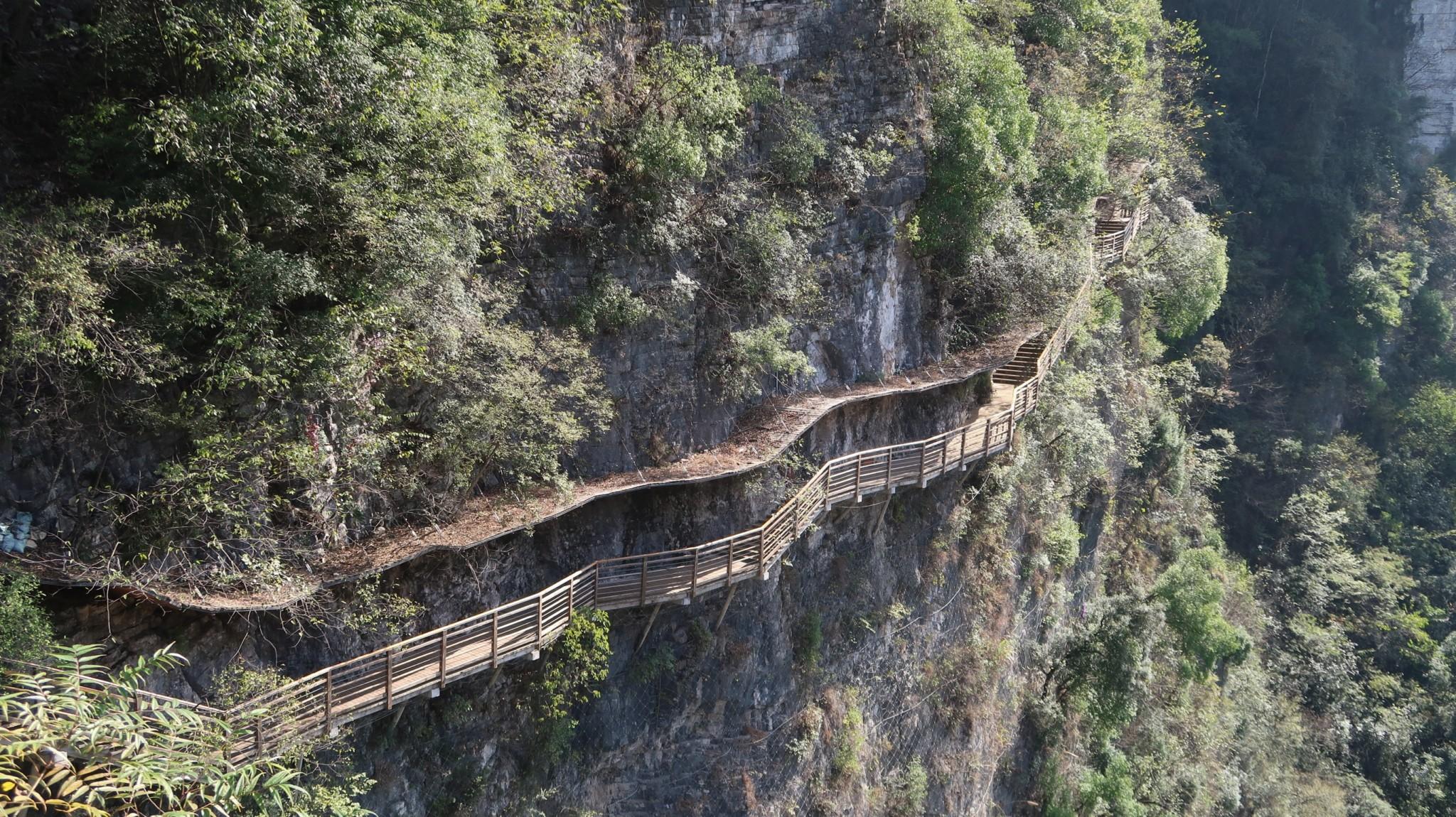 Zhangjiajie National Park Canyon und Glasbrücke