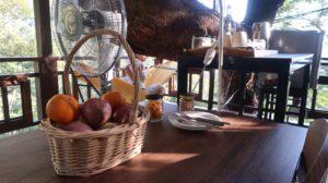 Baumhaus mit Obst