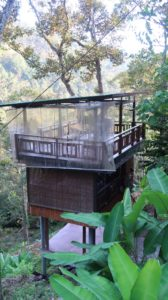 Treehouse Green Acres Penang
