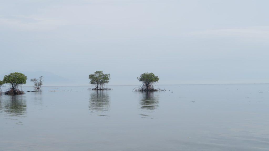 Nusa Bay - Reiseberichte von der Insel Bali