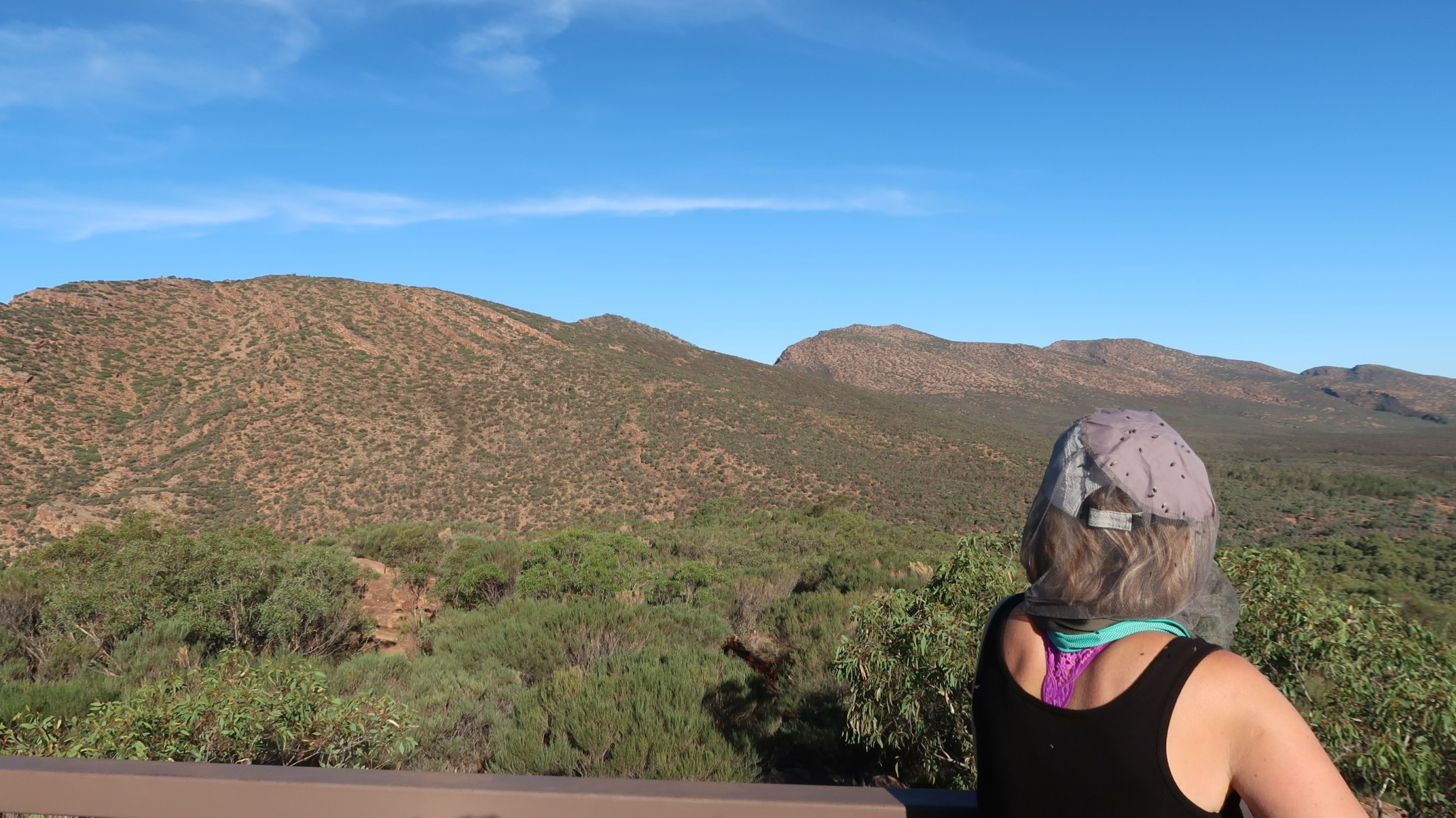 Aussicht Flinders Range Nationalpark